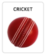 cricket-seasonal-sports.jpg
