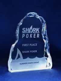 1154_glass-trophy.jpg