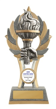 11a-cf35g_discount-education-trophies.jpg