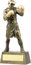 A1249B_BoxingTrophies.jpg