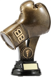 A307A_BoxingTrophies.jpg