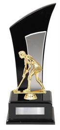 F110_HockeyTrophies.jpg