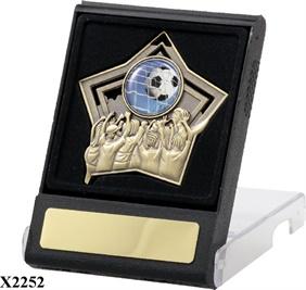 H2_Medal_Case_Star_TCD.jpg