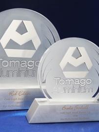 TOMAGO_Custom_TrophyTomagoAluminium.jpg