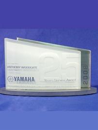 YAMSA_Custom_TrophyYamahacopy.jpg
