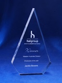 ac60b_acrylic-trophy-halgroup.jpg