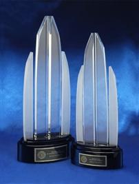 asp-crystal-awards-championandrunnerup.jpg