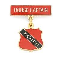 sck-hool-badges---auburn-ps.jpg