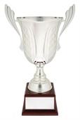 c0257_discount-general-sports-trophies.jpg
