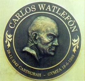 cast-bronze-plaque_montenegro-park.jpg