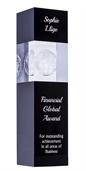 gl04a_discount-crystal-globe-trophies.jpg