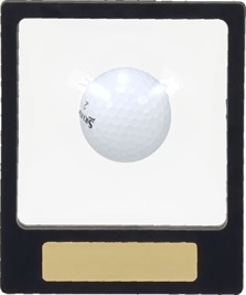 h13_golf-trophies.jpg