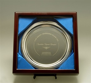 ht-pg13_1-silver-tray.jpg