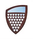 sh20-540_shield-perpetual-award.jpg