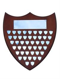 sh4-540-timber-shield-perpetual.jpg
