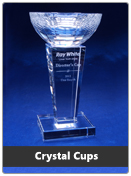 corporate-awards-page-tn-crystalcups.jpg
