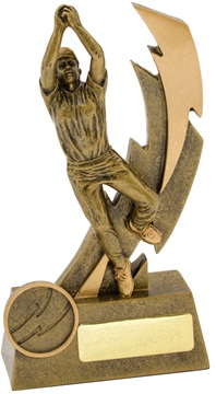 11609a_discount-cricket-trophies.jpg