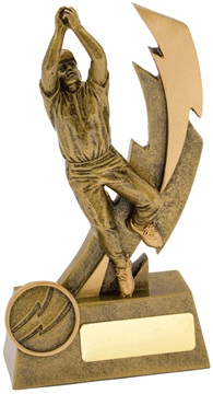 11610a_discount-cricket-trophies.jpg