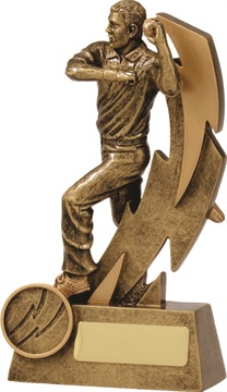 11611a_discount-cricket-trophies.jpg