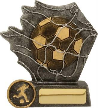 12080l_discount-soccer-and-football-trophies.jpg