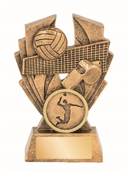 16572a_discount-volleyball-trophies.jpg