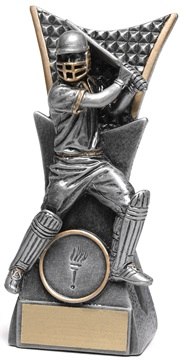 29114a_discount-cricket-trophies.jpg
