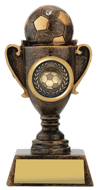 30004_discount-soccer-football-trophies.jpg
