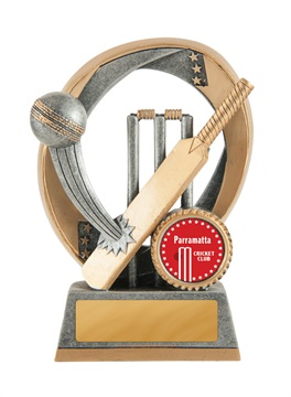 613-1a_discount-cricket-trophies.jpg