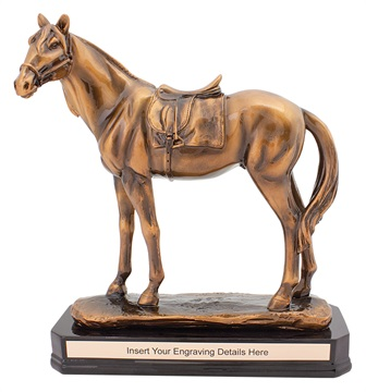 a1902_discount-horse-sports-trophies.jpg