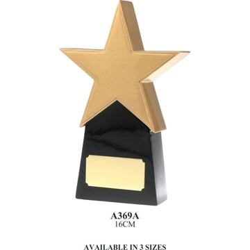 a369a_resin-star-trophies.jpg