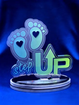 acp1_custom-acrylic_trophies-in-shap_web.jpg