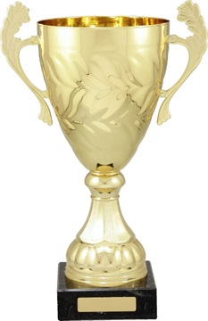 c4125_discounted-trophy-cups.jpg