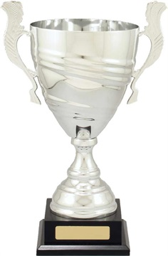 c8256_discount-cups-trophies.jpg