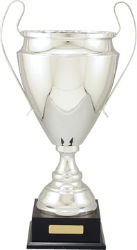 c9309_discount-cups-trophies.jpg