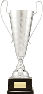 c9312_discount-cups-trophies.jpg