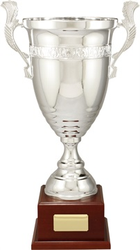 c9315_discount-cups-trophies.jpg