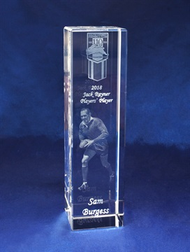 3D Crystal | Amazing internally etched crystal awards and Trophies