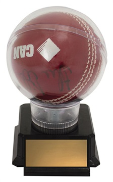 ch125_discount-cricket-trophies.jpg