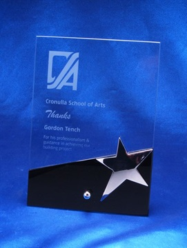 dp75_glass-trophy-star.jpg