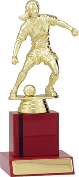 f7109_discount-soccer-and-football-trophies.jpg
