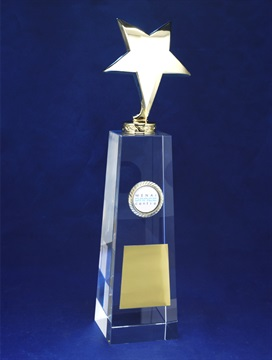 jip0088-h_discount-trophies_crystal-star-awa-1.jpg
