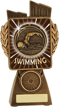 lr002a_discount-swimming-trophies.jpg