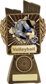 lr027a_discount-volleyball-trophies.jpg