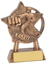 martial-arts-trophies.jpg