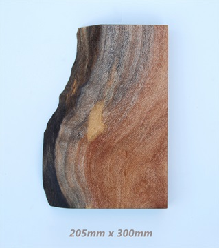 natural-timber-piece_5.jpg