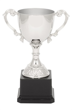 nc01cs_205mm-quality-metal-trophy-cups.jpg