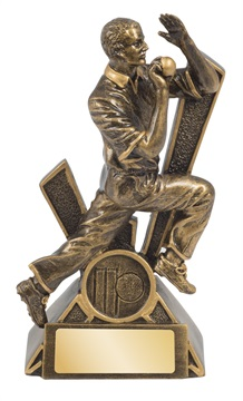 rlc765a_155mm_discounted-cricket-trophies.jpg