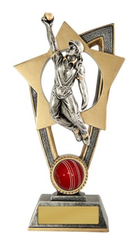 s170303a_discount-cricket-trophies.jpg