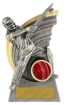 s170701a_discount-cricket-trophies.jpg