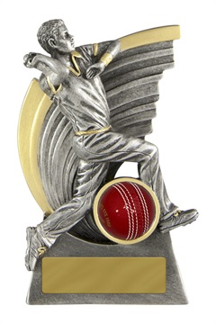 s170702a_discount-cricket-trophies.jpg